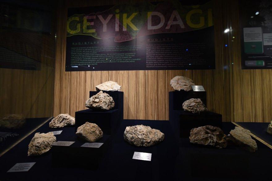 "-""fosil-tas-mineral""-sergisi-003.jpg"